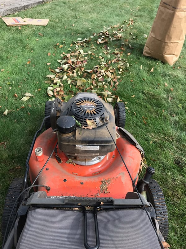 Picking up leaves with a lawn mower
