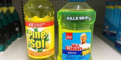 Mr. Clean vs. Pine-Sol: What's the Difference?