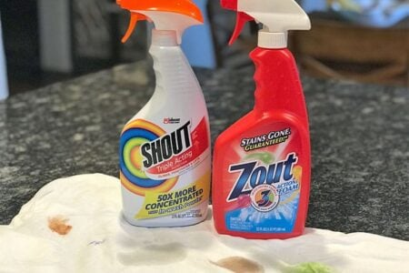 Zout vs. Shout: Which Stain Remover Is Better?